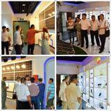 Comitato solare solare di poli potere 300W per elettricità domestica