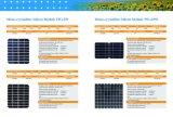 Poli comitato solare 70W con il prezzo poco costoso fatto in Cina