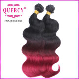 Hot organisme brésilien de vente Virgin Remy vague Ombre Hair Extensions
