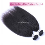 販売の長さインドのねじれたバージンの毛の束8-30インチの