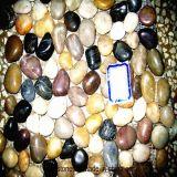 Mattonelle decorative della roccia del fiume del giardino Mixed