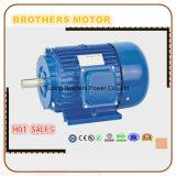 Motore sincrono a magnete permanente a tre fasi di CA Y di Ie4 400V 230V 380V