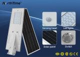 20watt tout dans un réverbère solaire du Temps-Contrôle PIR DEL