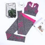 Йога установленное Yjf10301011 повелительниц пригодности Sportswear дешевых женщин OEM установленная