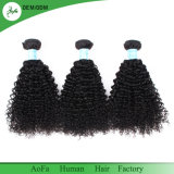 100% non transformés Kinky Curly Remy Hair Virgin Cheveux humains