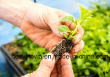 100% de extracto de stevia Edulcorante Natural azúcar refinado ra el 97%