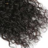 Piar Grosso 100% virgem Brasileira Remy de cabelo humano tecer Cabelos encaracolados trama, Remy Extensões de cabelo podem ser tingidos (TFH18)