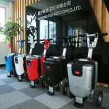 Conformité blanche de la CE de scooter électrique de mobilité d'enfants de roue du moteur 3 de vitesse du prix usine 250W