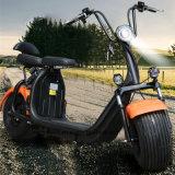 2018 저장 상자를 가진 쉬운 이동할 수 있는 건전지 Harley Citycoco 스쿠터 1000W 1500W