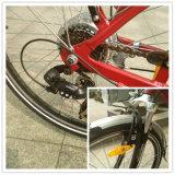 Città calda Electric Bike di Sale En15194 con Rear Rack