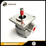 작은 실린더 수평한 유압 기어 펌프 Gpy8r 9r 10r 11.5r
