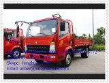 Il carico chiaro della Cina HOWO 4X2 LHD trasporta i camioncini scoperti su autocarro chiari