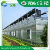 Le Polycarbonate couvrant feuille creux Commercial/serre agricole