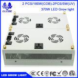 La vendita calda 300W LED si sviluppa chiara per la piantatura i pomodori e delle piante d'appartamento