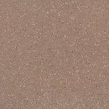 Tegels 600*600 van het Porselein van het Lichaam van het zout en van de Peper de Volledige