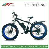 Verde Litio Poder Eléctrico de la Bici con Freno de Disco Hidráulico