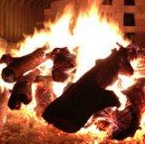 A mão opera a caldeira de vapor despedida do bagaço das cascas dos registros da capacidade 1-6ton o desperdício de madeira