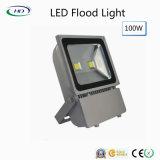 100W indicatore luminoso di inondazione classico di serie LED per l'indicatore luminoso del giardino