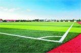 環境に優しい運動場の小型フットボールのサッカー競技場の人工的な草(M50)