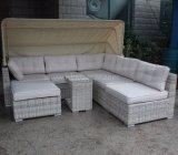 Il sofà vivente della nuova dell'hotel di Deisgn del patio mobilia del giardino ha impostato con la presidenza di randello