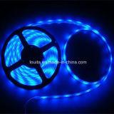 백색 SMD 5630 60LEDs/M LED 지구