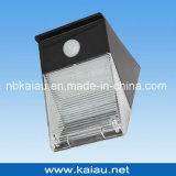 lumière solaire de détecteur de 12PCS DEL