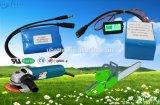 18650 12V 6600mAh E 차량 건전지를 위한 재충전용 리튬 이온 건전지 팩 LiFePO4 건전지