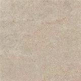 Mattonelle di pavimento rustiche della stanza da bagno pronta con il disegno dell'arenaria