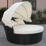 La rota al aire libre Sunbed del PE de los muebles del jardín de la piscina de la playa desensambla el Daybed