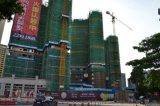 De Kraan van de Toren van de Ketting van Hydraulictopkit van de bouw