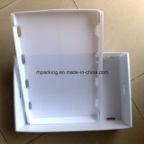 Pp pliant les boîtes et le couvercle en plastique de Box/PP pour bourrer au lieu des cadres de papier