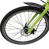 Btnグループの貨物バイクフレームの電気自転車