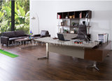 새로운 현대 가죽 PVC 사무실 행정상 책상 (V5A)