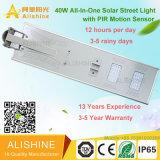 40W luz de calle de energía solar de la alta calidad LED con precio competitivo