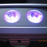 rondella esterna della parete dell'indicatore luminoso DMX LED della fase di 18X18W 6in1
