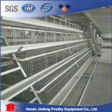 Цыплятина оборудования клетки батареи Jinfeng автоматическая арретирует с подавая клеткой цыпленка клетки поголовья системы