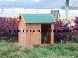 Chambre de chien (QZD8056)