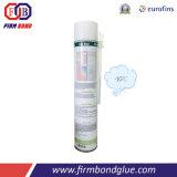 Fixação de construção e utilização de vedação de espuma de PU tipo de Inverno