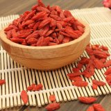 Goji Beere (Lycium barbarum) von China