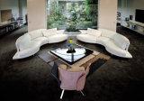 Sofa en cuir (T-01#)