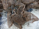 Hyazinthe-Kugel-hängender Korb mit Löchern