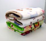 [بلنكت/] نزهة غطاء/يثاقل غطاء