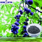 Fertilizante microbiano do composto NPK da base do carbono de Kingeta