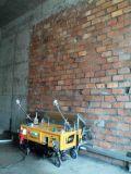 De Populaire Automatische Machine wereldwijd van het Hulpmiddel van Reder van het Mortier van het Cement van de Mixer van het Pleister van de Muur van de Bouw