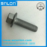 Hexagon Flange Bolt with Tooth