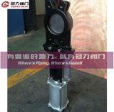 Knife pneumatico Gate Valve con Cylinder per Water Treatment