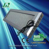 Panneau LED 600W croître la lumière (GLG-10)