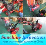 Sunchine Inspection/歴史の12年著テスト、点検および証明サービス