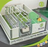 Оборудование клетки свиньи оборудования клетки свиньи клетей высокого коэффициента выживаемости порося