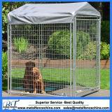 Galvanisierte und Puder-überzogene große Hundehochleistungshundehütte